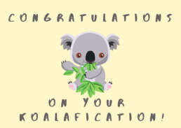 congratulations qualification koala bear - Cake Card - postcake